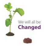 Christian Unity Logo 2013