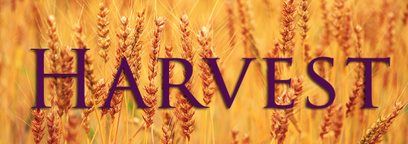 Harvest-banner